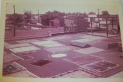 Historic Mercer Rug Cleaning rugs, Richmond VA