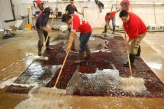 Rug Cleaners Hand Washing Process Williamsburg VA